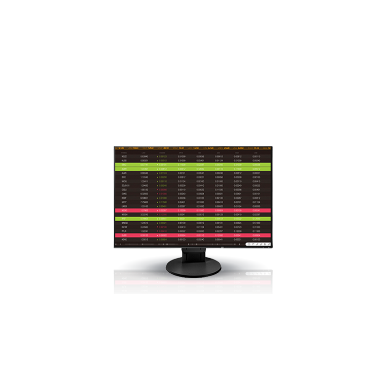 Ecran Eizo FlexScan EV2456 - Occasion -